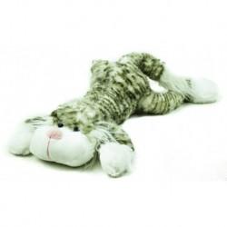 Kočka ležící