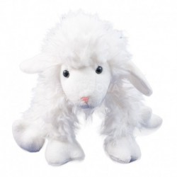 Ovce střapatá