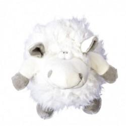 Ovce koule bílá
